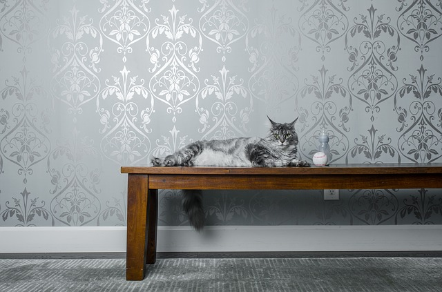 a hardwood table with a cat on it